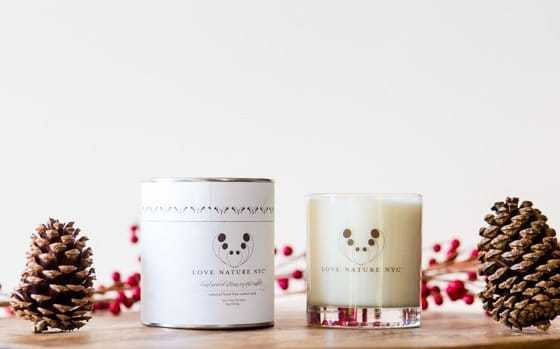 Natural & Organic Gifts For Holiday 2016 #dmholiday16