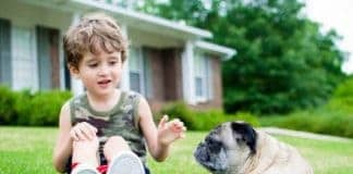Helping Kids Understand The Death Of A Pet