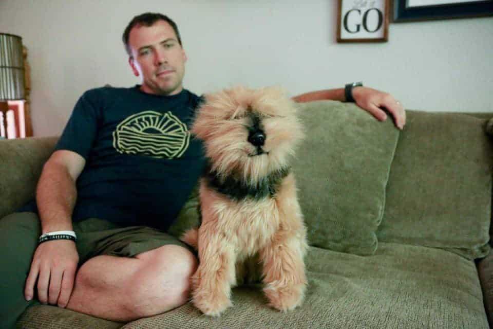 petsie-dog-1