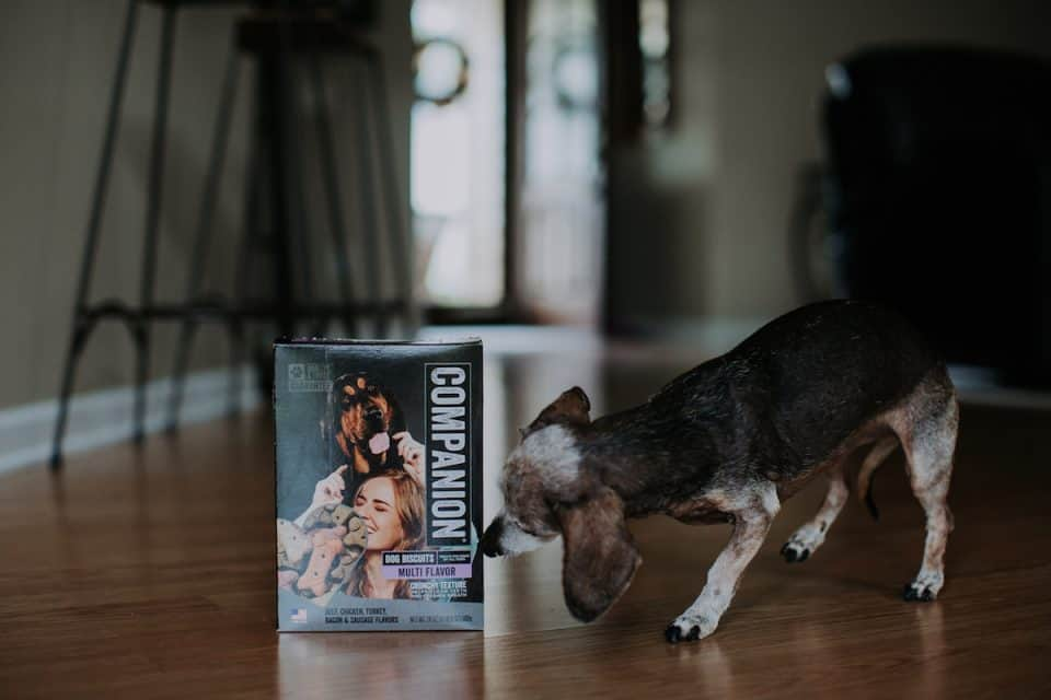 Companion Dog Food