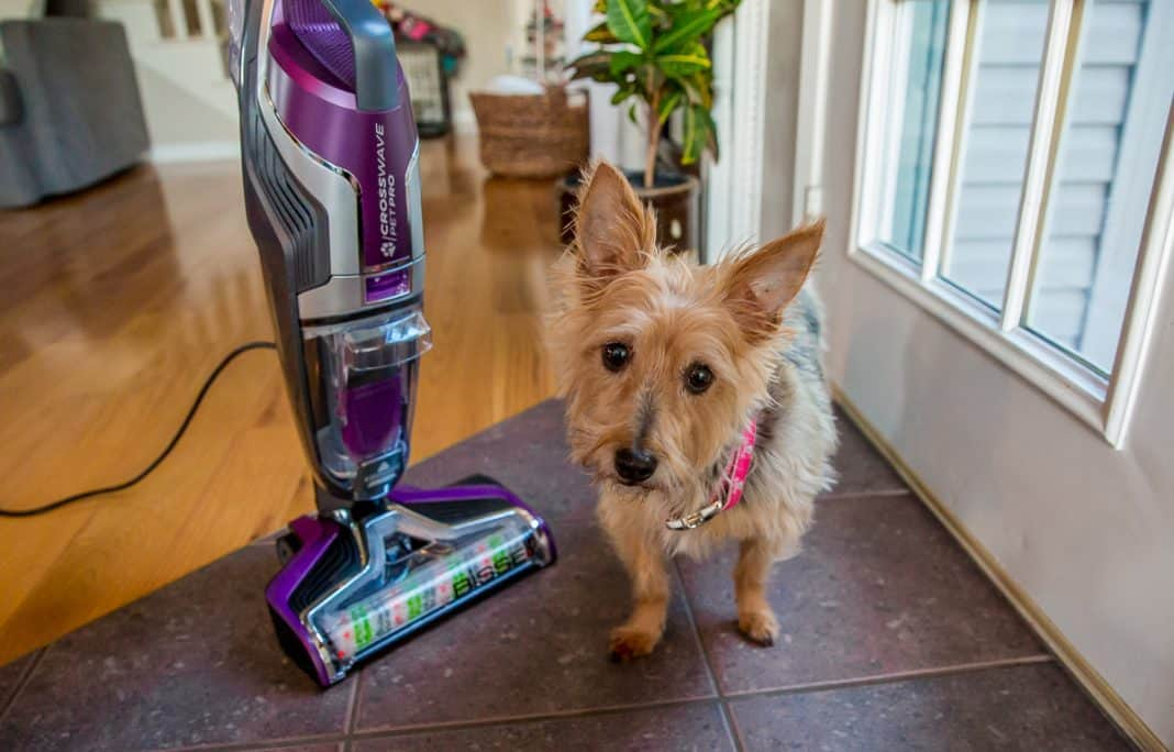 Crosswave Pet Pro Wet/dry Bissell Vacuum Cleaner Review