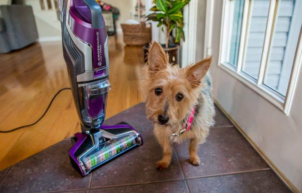 Crosswave Pet Pro Wet/Dry Bissell Vacuum Cleaner Review 2 Daily Mom Parents Portal