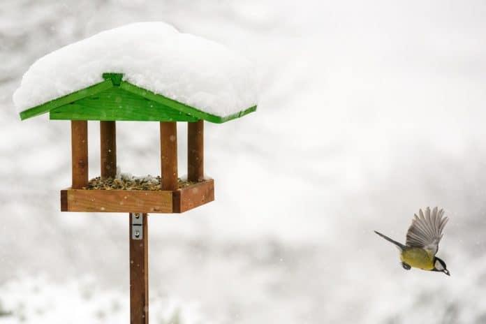 5 Ways To Celebrate Winter Solstice
