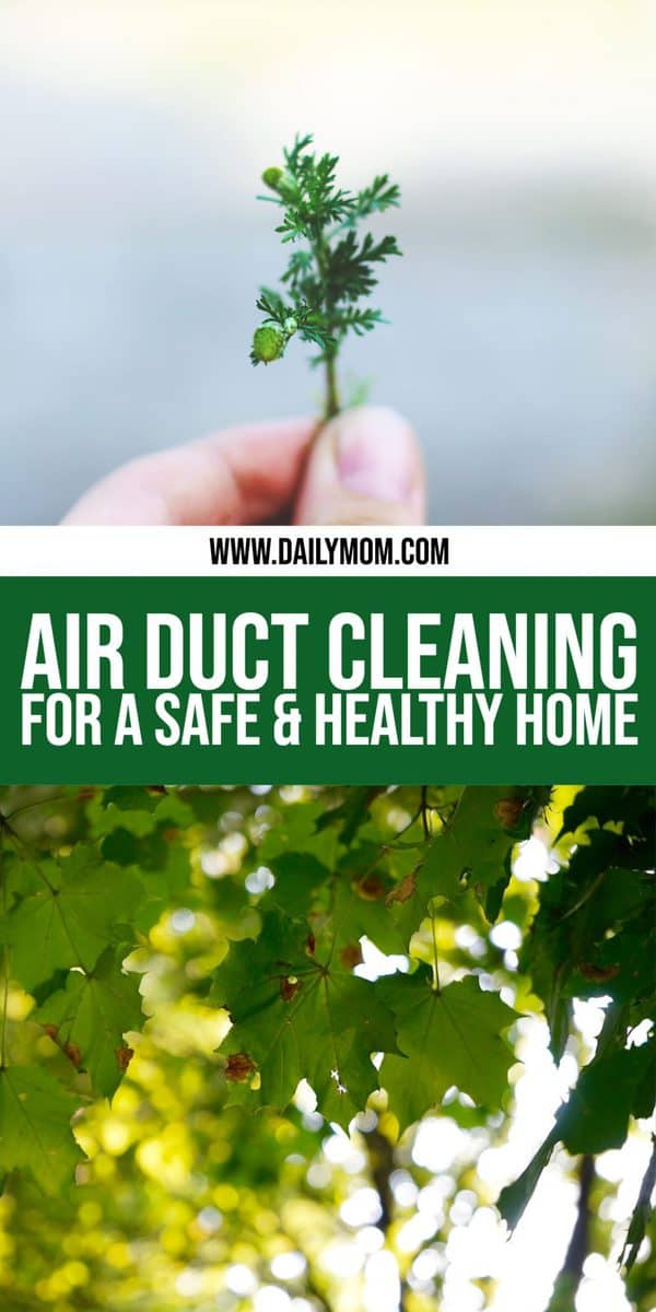 Daily Mom Parent Portal Air Duct Cleaning