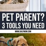 3 Smart Pet Essentials That Will Make Your Life Easier 1 Daily Mom Parents Portal