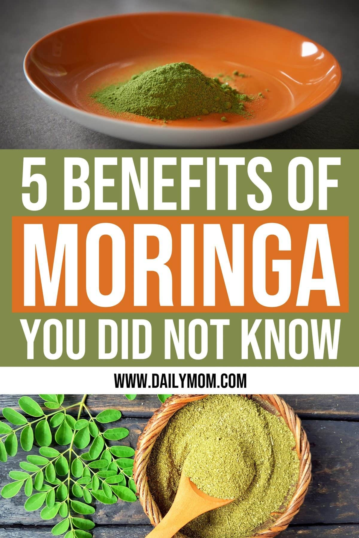 daily mom parent portal benefits of moringa