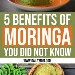 5 Benefits of Moringa You Did Not Know About 1 Daily Mom Parents Portal