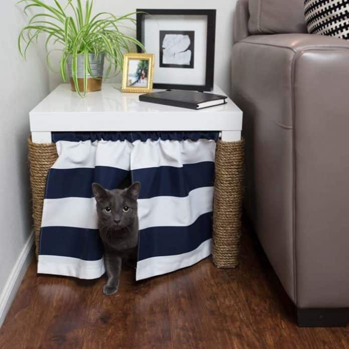 5 Cat Litter Box Furniture Solutions You Did Not Know Existed