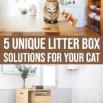 5 Cat Litter Box Furniture Solutions You Did Not Know Existed 1 Daily Mom Parents Portal