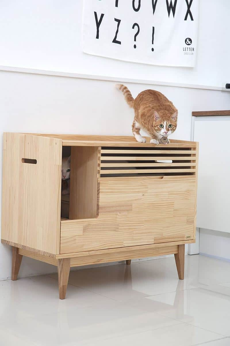 5 Cat Litter Box Furniture Solutions