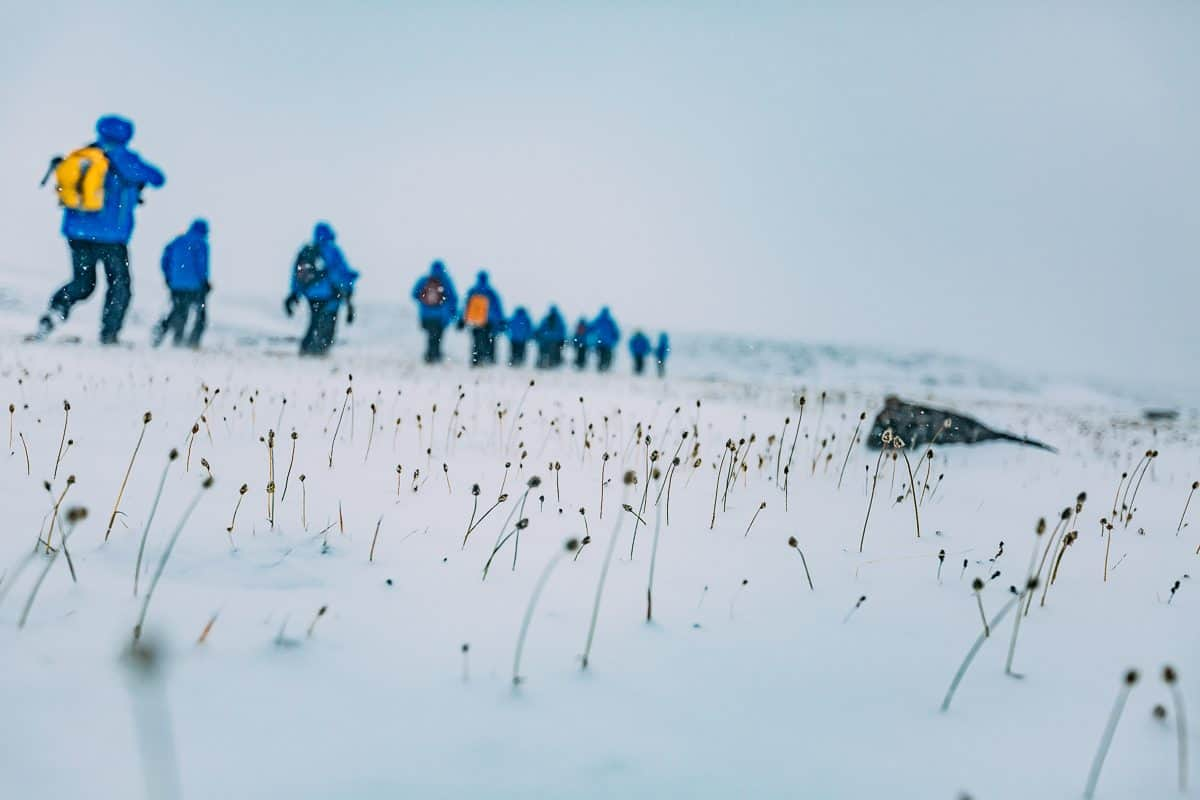 Arctic Cruise With Adventure Canada Daily Mom Parent Portal Philpots Island