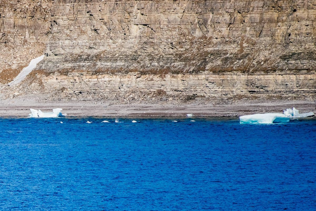 Arctic Cruise With Adventure Canada Daily Mom Parent Portal Straton Bay