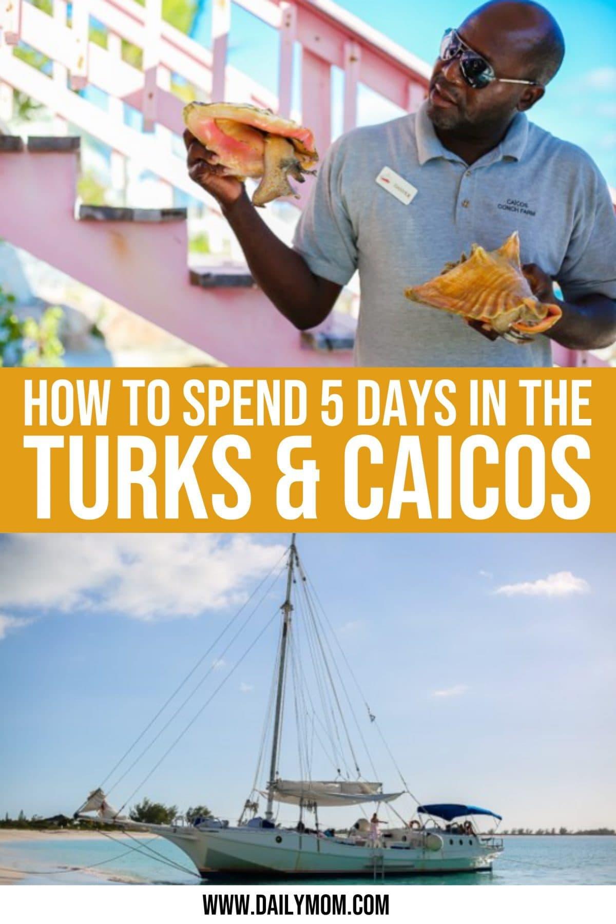 daily mom parent portal travel to turks and caicos