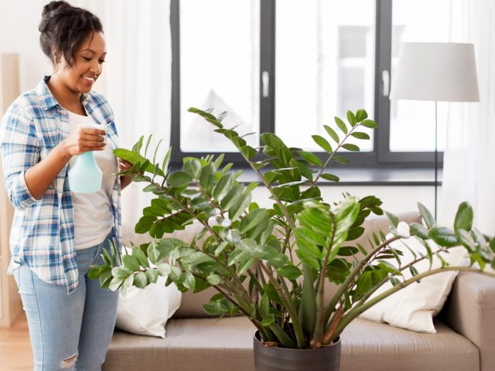 Spring Decor To Update Your Interior And Exterior