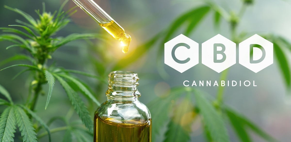 CBD 5 Ways How It Helps Moms Survive A Busy Day - Daily Mom Parents Portal