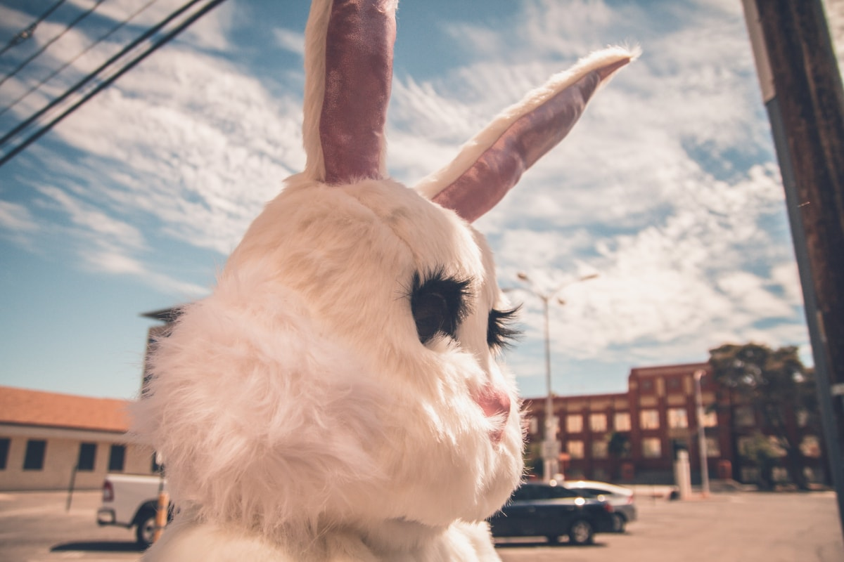 daily-mom-parent-portal-The History Of The Easter Bunny