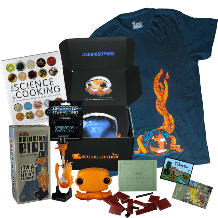 Awesome Toy Subscription Boxes For Homeschooling During Covid-19