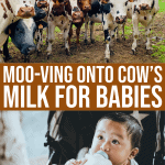 Moo-ving Onto Cows Milk For Babies, Let's Get Started!