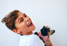 Potty Training A Dog: Beginners Guide