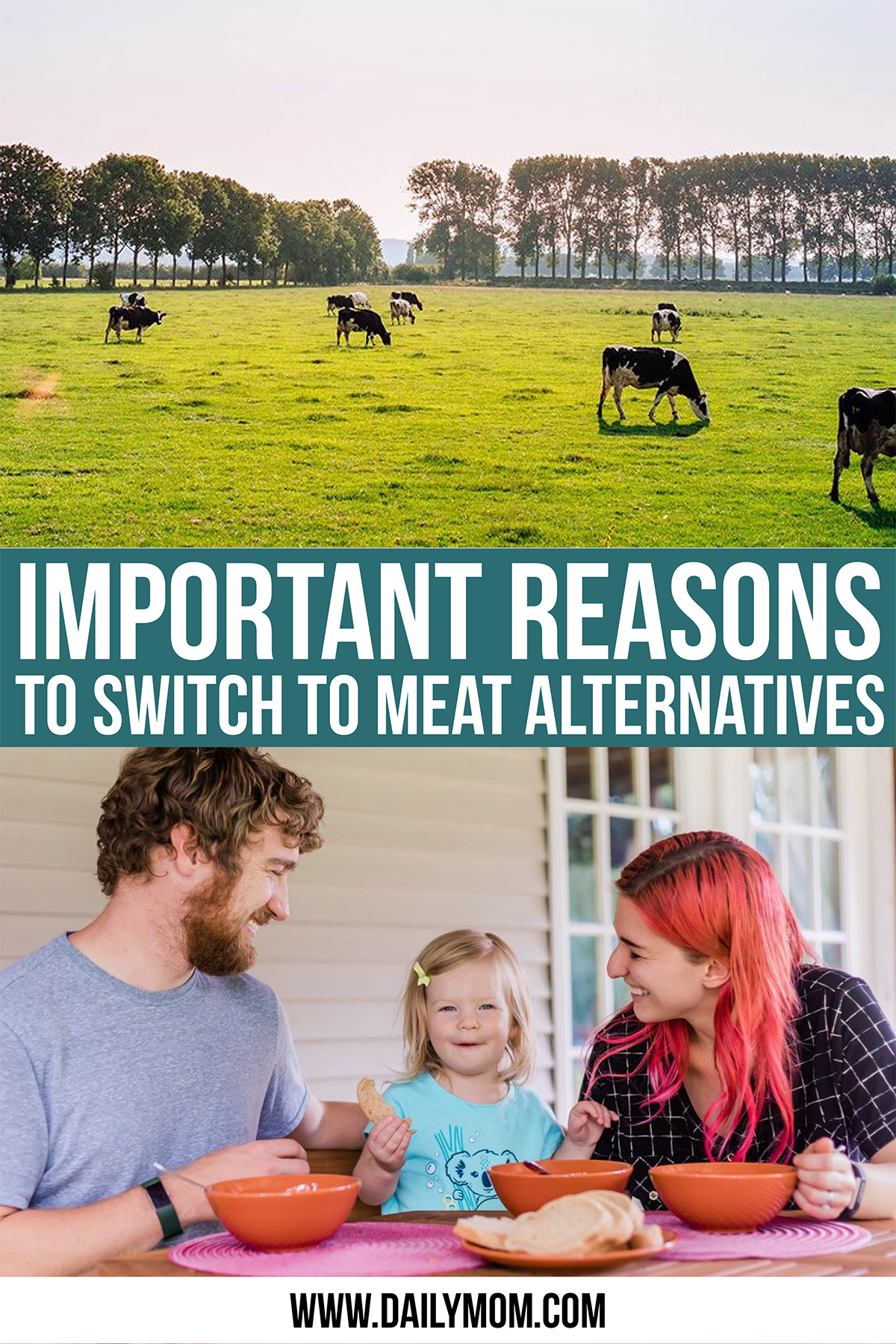 daily-mom-parent-portal-Important Reasons To Switch To Meat Alternatives