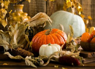 daily-mom-parent-portal-5 Surprising Things About The Origin Of Thanksgiving You Need To Know