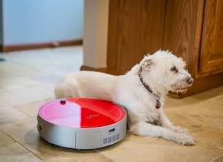 Daily Mom Spotlight: Our New Favorite Robot: Bobi Pet
