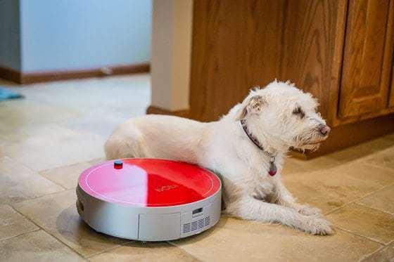 Daily Mom Spotlight: Our New Favorite Robot: Bobi Pet